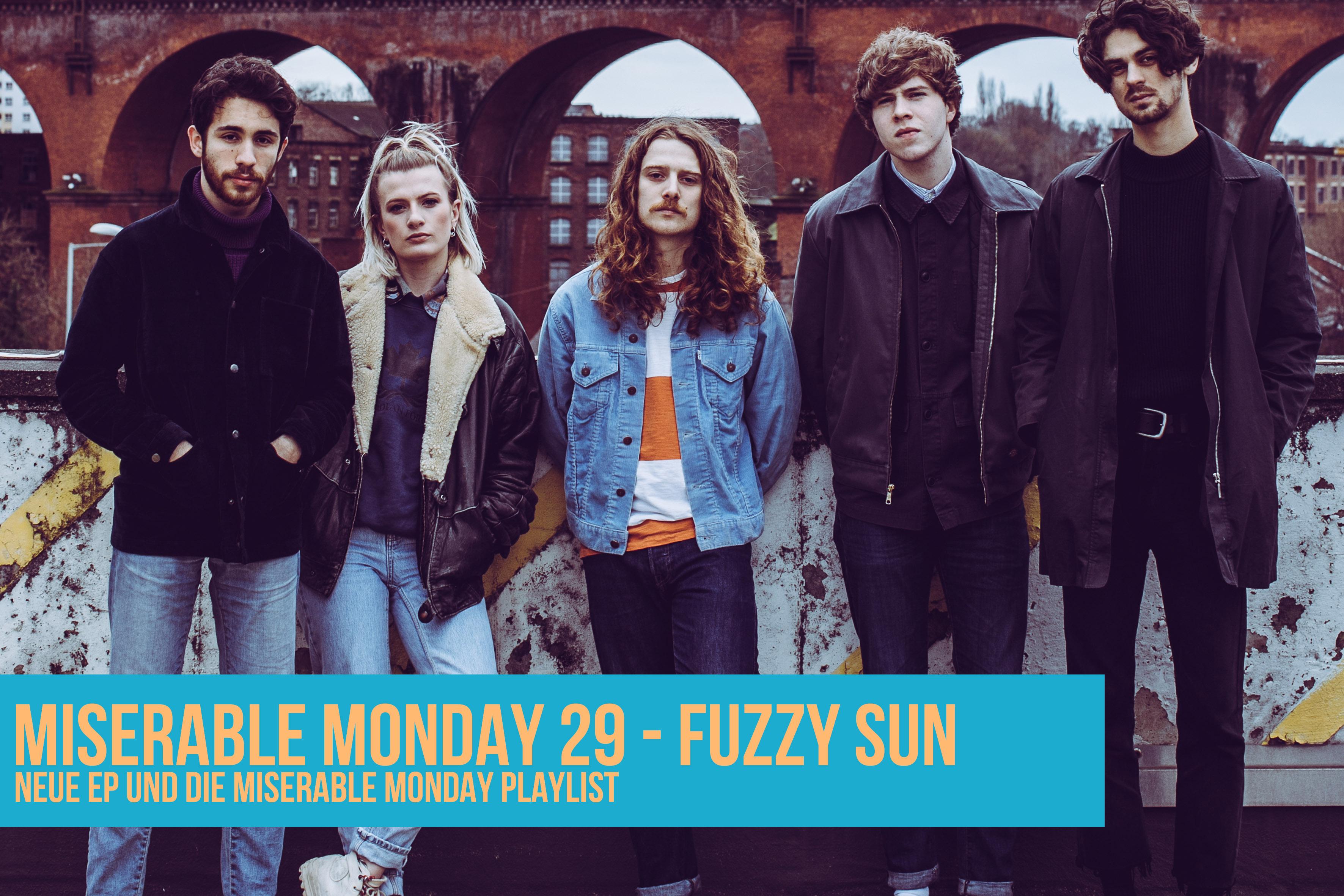 029 - Fuzzy Sun
