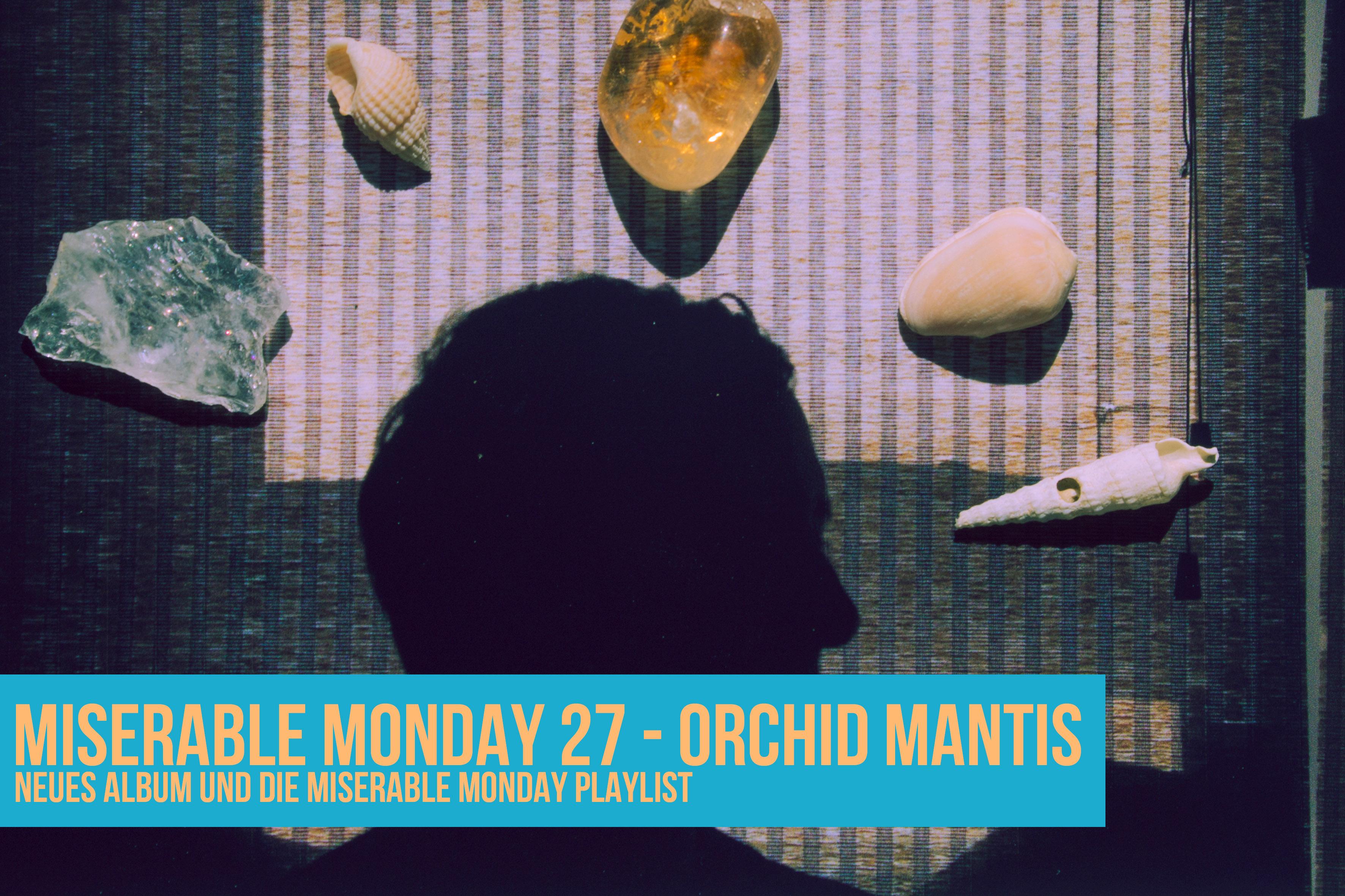027 - Orchid Mantis